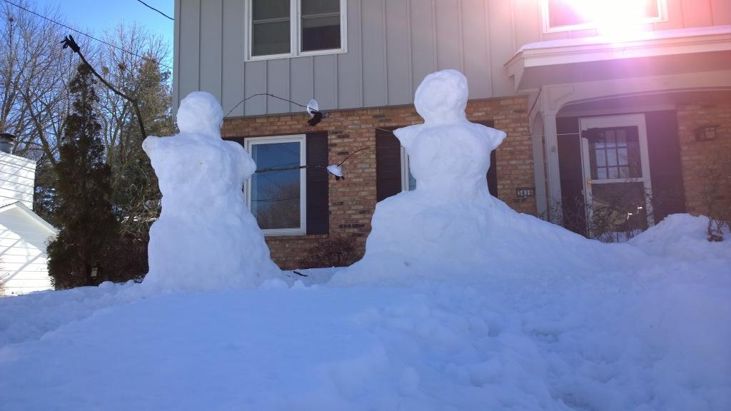 Snow fencers